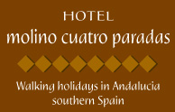 Accommodation Rural Hotel Ronda Spain